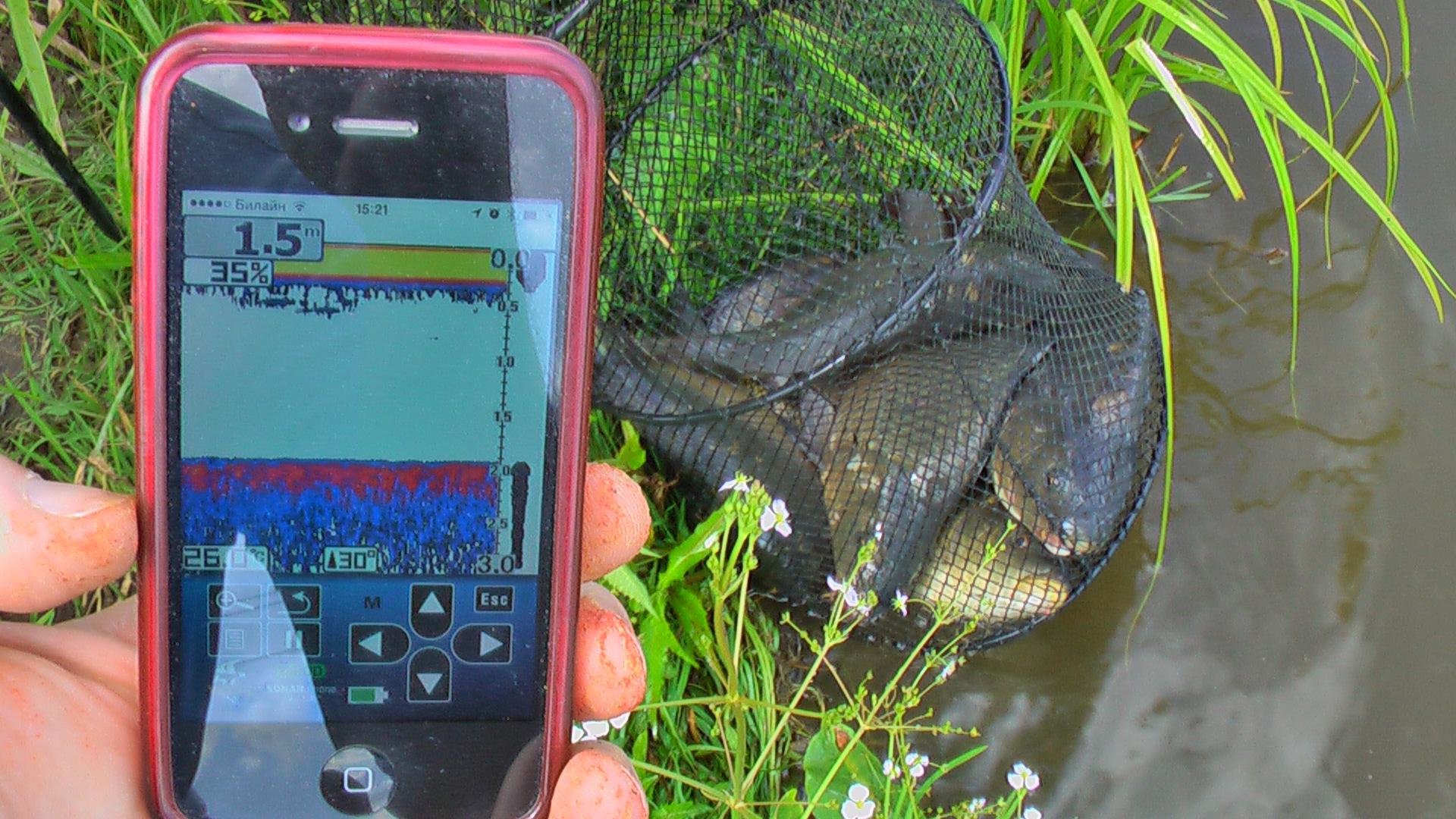 рыбалка эхолот выбор